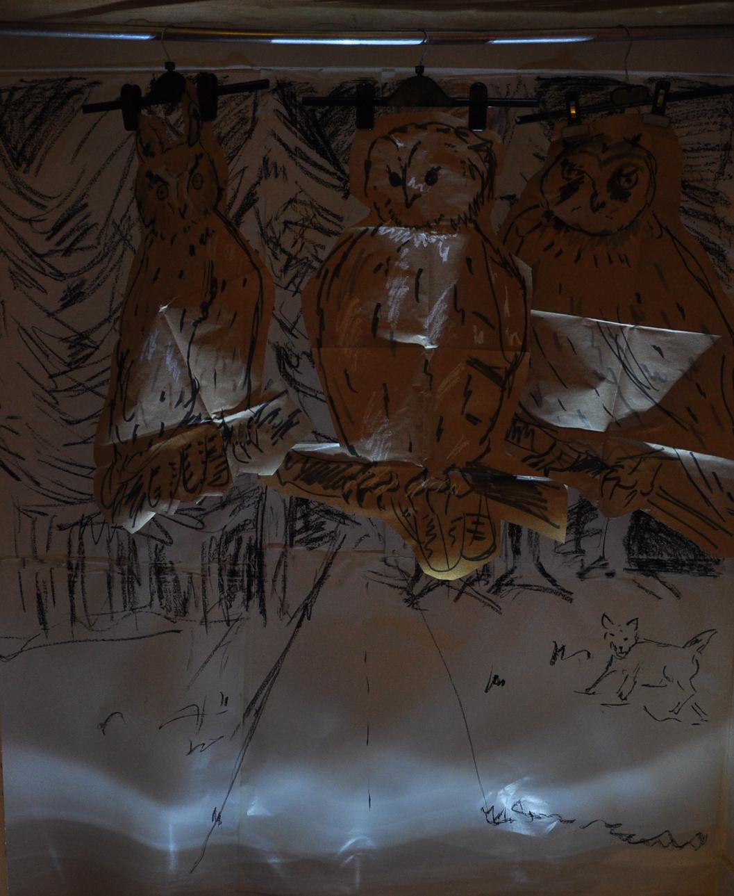 DSC_0188 three owls in dark sml.jpg