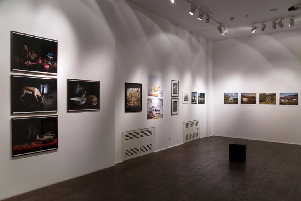 MOMA-GA.jpg