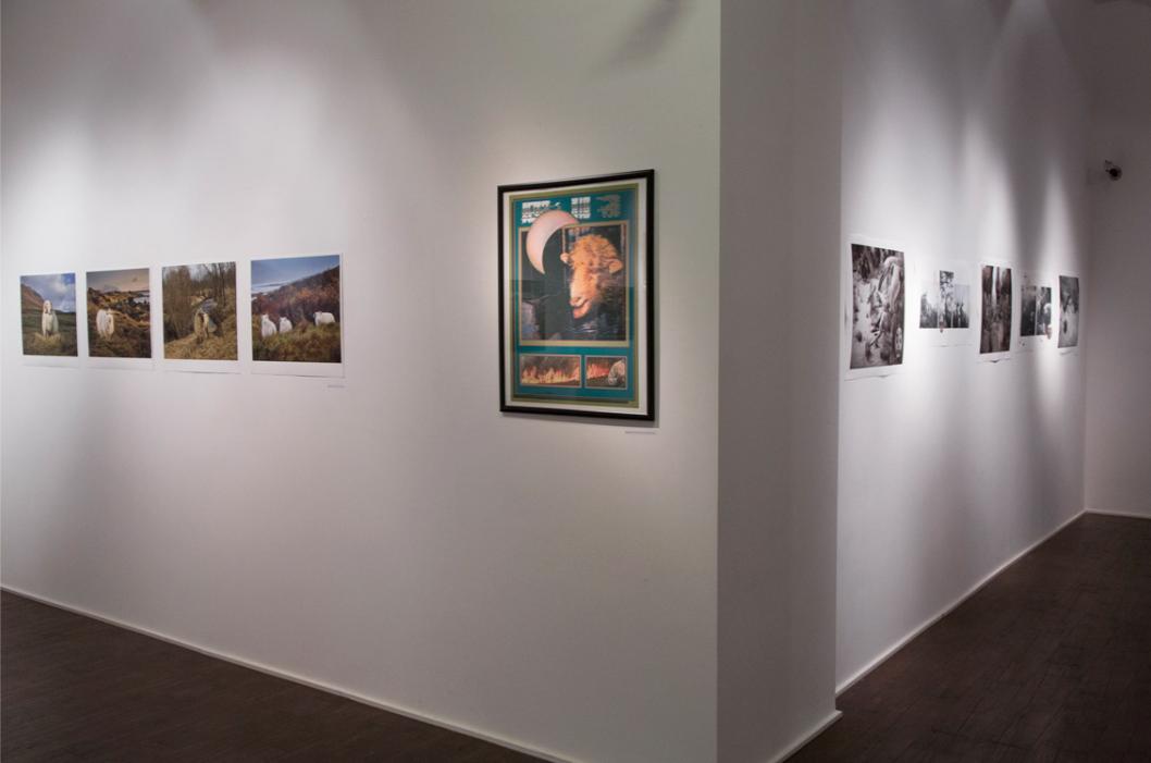 MOMA-GA2.jpg