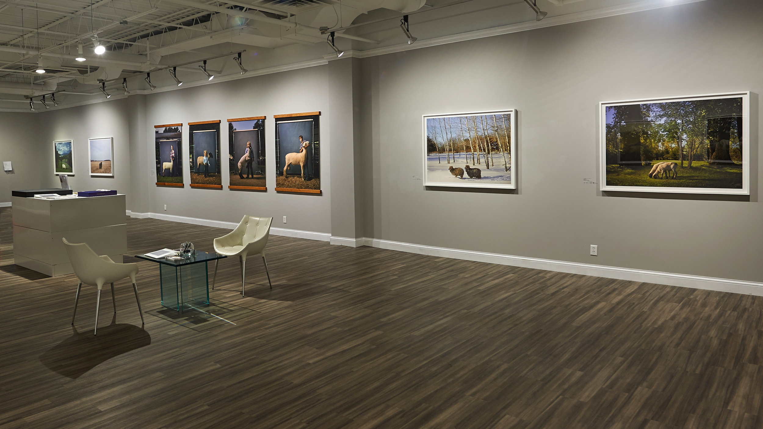 Selections from the exhibition at Burnet Fine Art & Advisory, Minnesota. 2018.