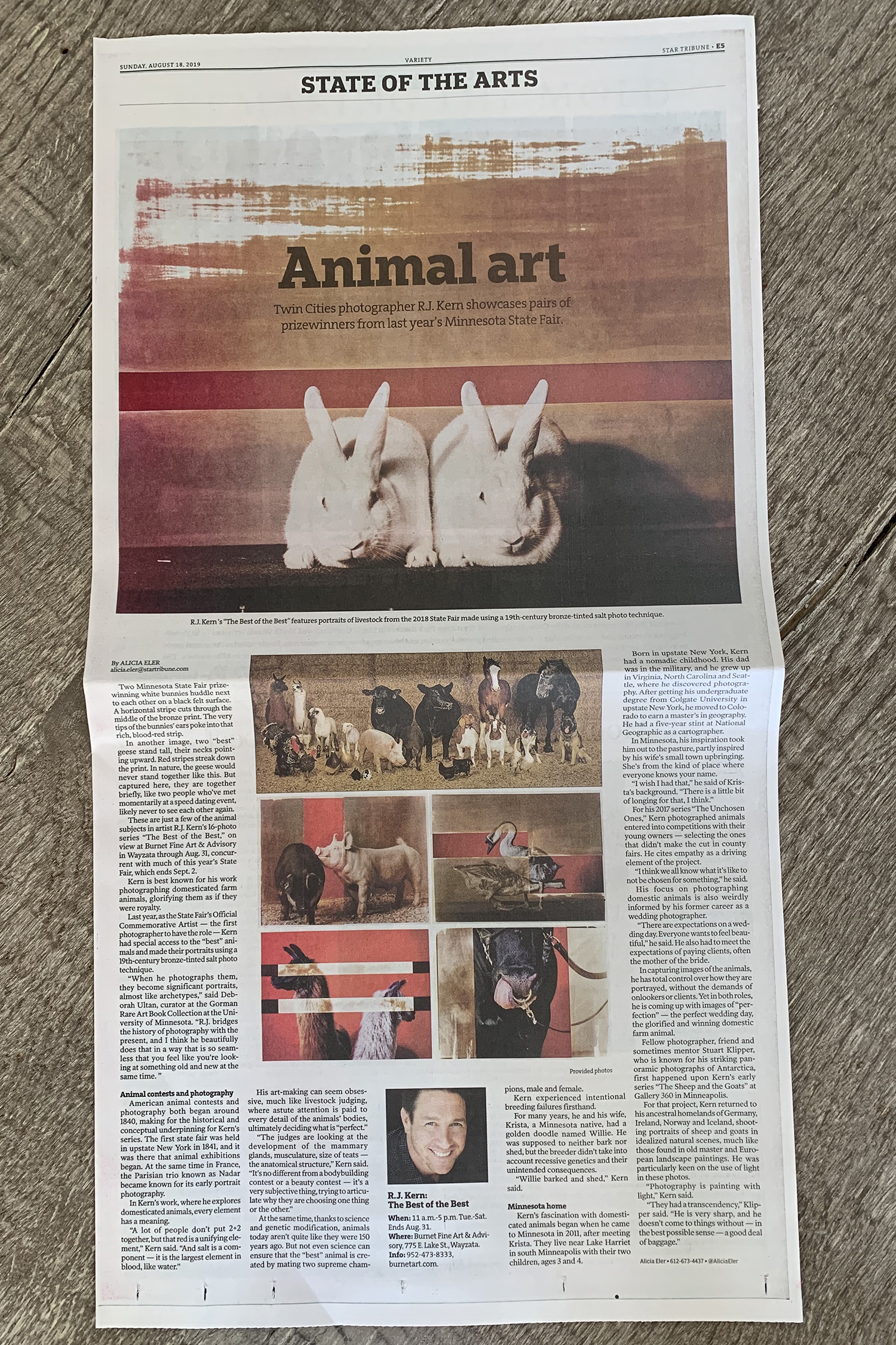 "R.J. Kern 's ""The Best of the Best"" features portraits of livestock from the 2018 State Fair made using a 19th-century bronze-tinted salt photo technique in the  Star Tribune  feature, August 18, 2019."