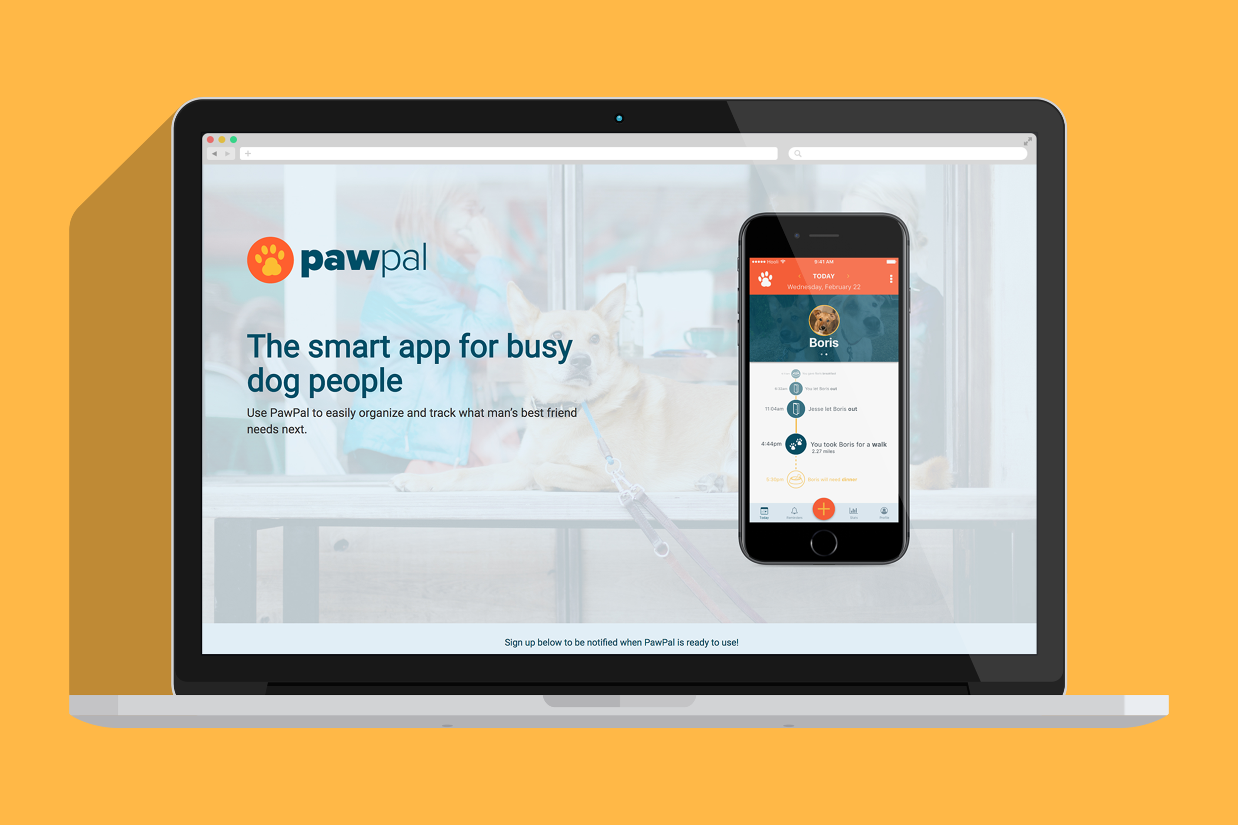 pawpal user research user experience design