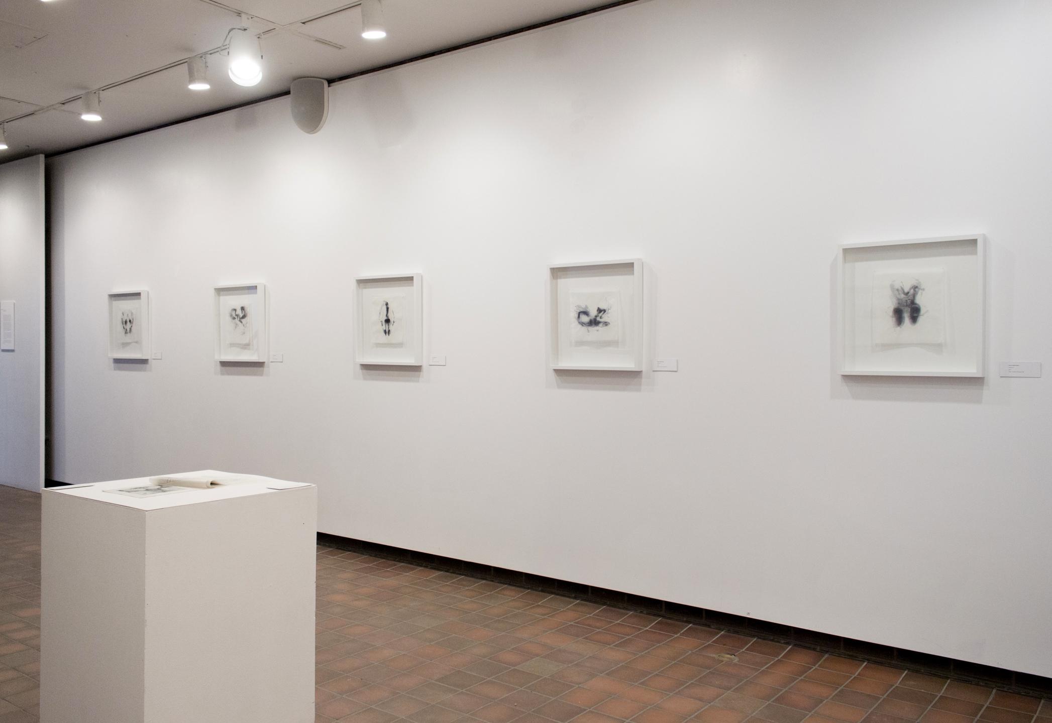 HABITUS exhibition documentation 2015
