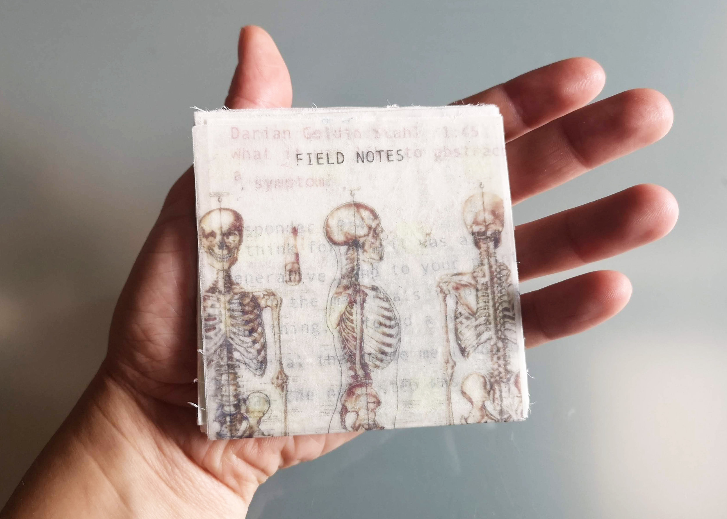 Field Notes_Cover.jpg