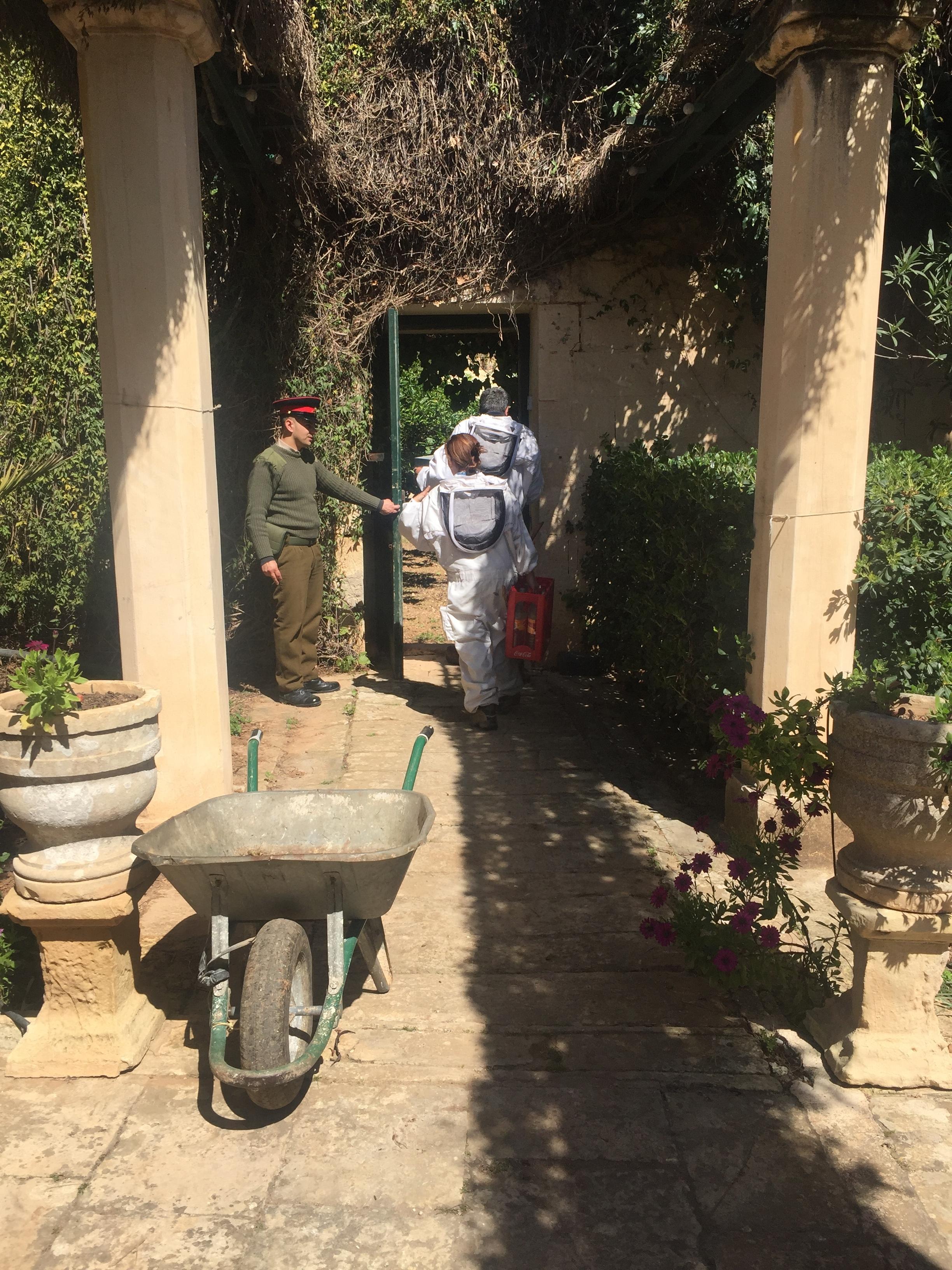 Beekeeping at San Anton Palace
