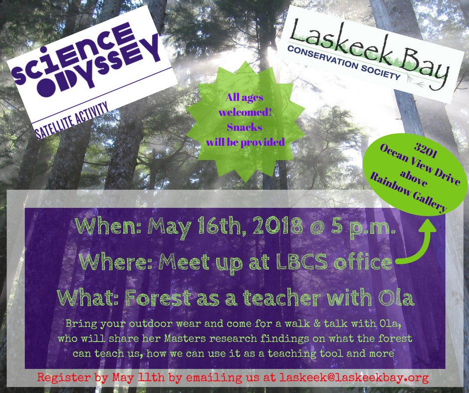 Forest as a teacher (1).png