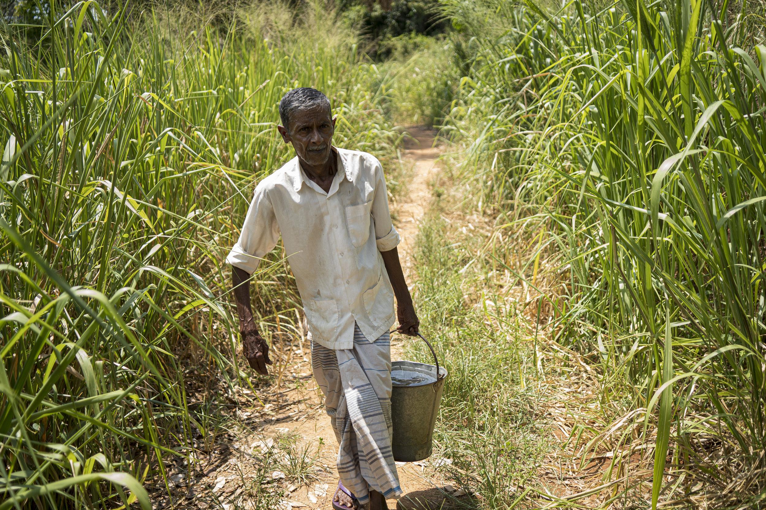 Sri Lanka und der Klimawandel --4.jpg