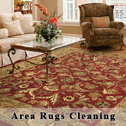 Barclay's Carpet Care -  Area Rugs Cleaning