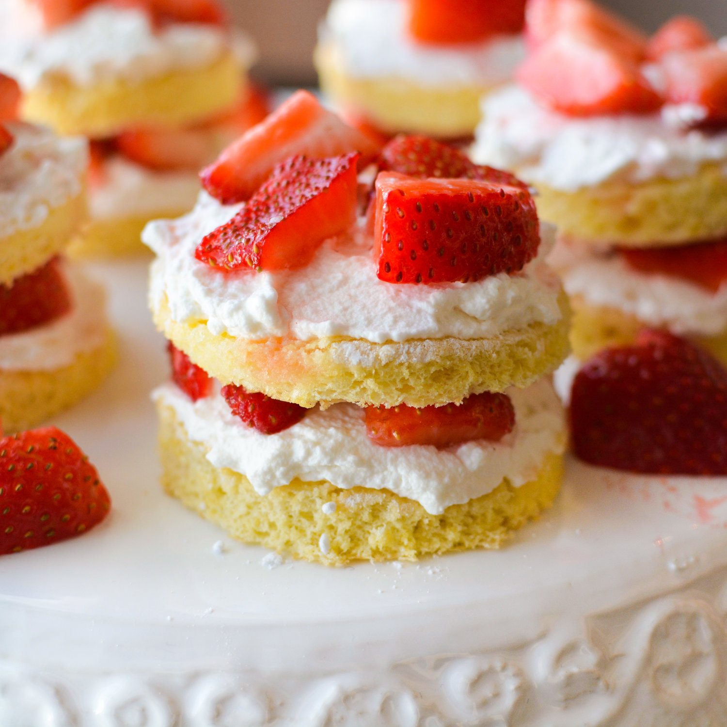 Sugared Lemon Sponge Cake with Strawberries and Whipped Cream