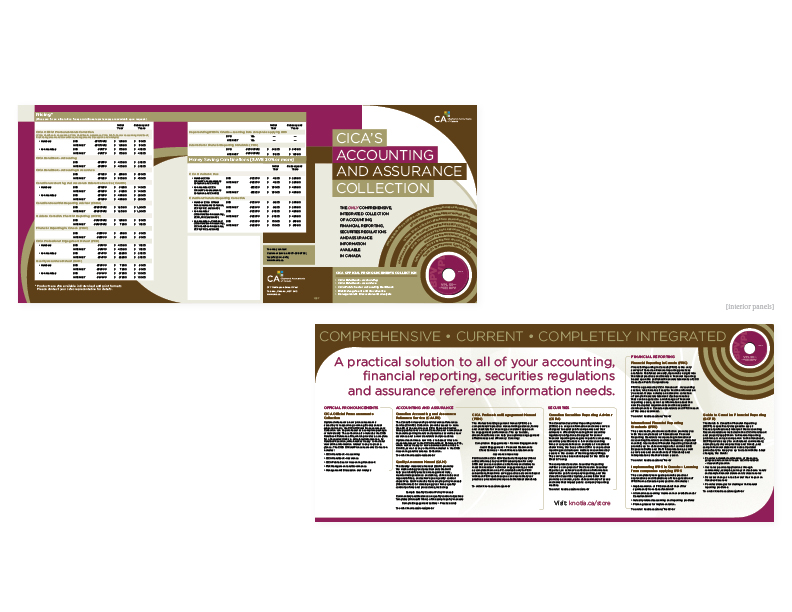 "Accounting and Assurance brochure  25.5"" x 11"" 6-panel, 2-fold promo piece [interior and exterior panels] — art direction/graphics/layout"