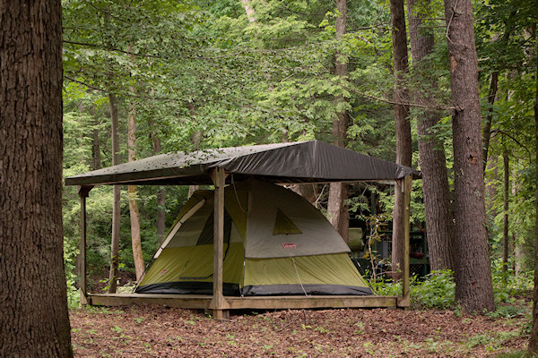 One of the tent platforms in the forest