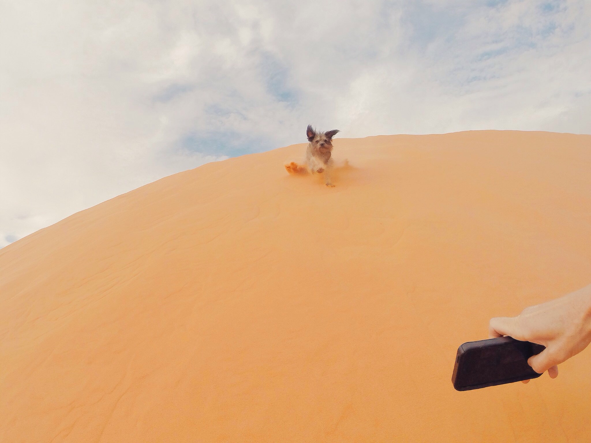Taking photos of Max with my GoPro and iPhone at the same time in Coral Sands park in Utah