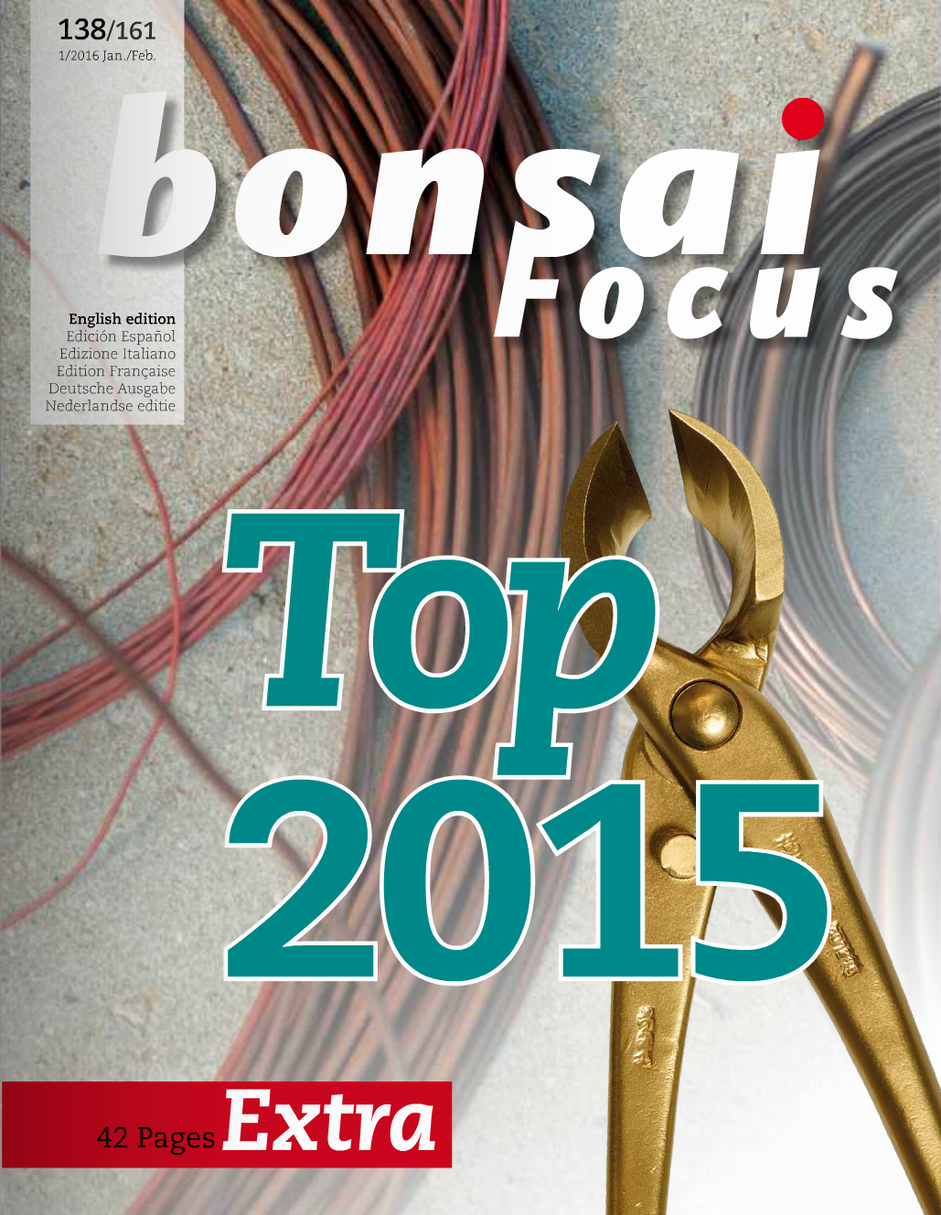 Bonsai_Focus_Cover.png
