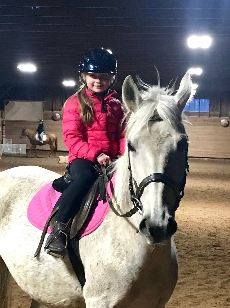 English Lessons - Jordan Rothman Dressage — Water's Edge Equestrian