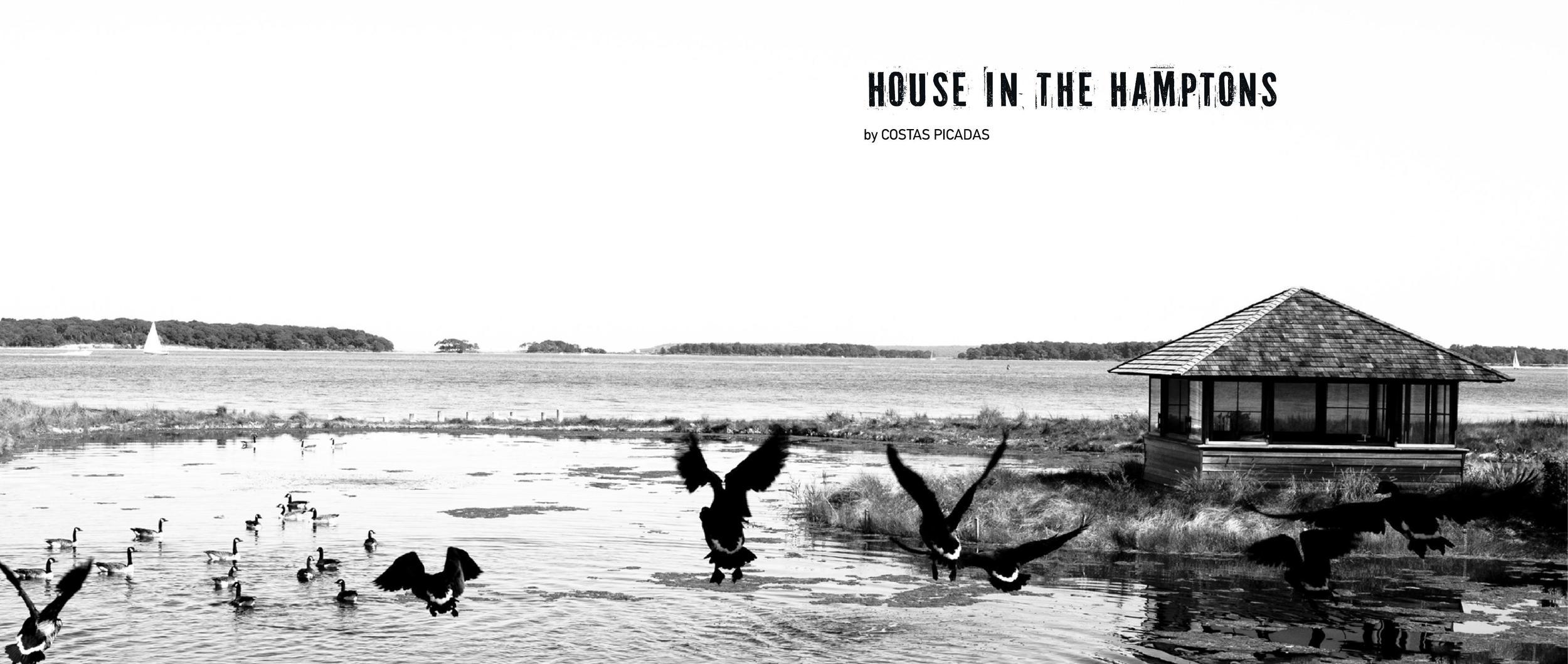 1-HOUSE IN THE HAMPTONS_000001.jpg
