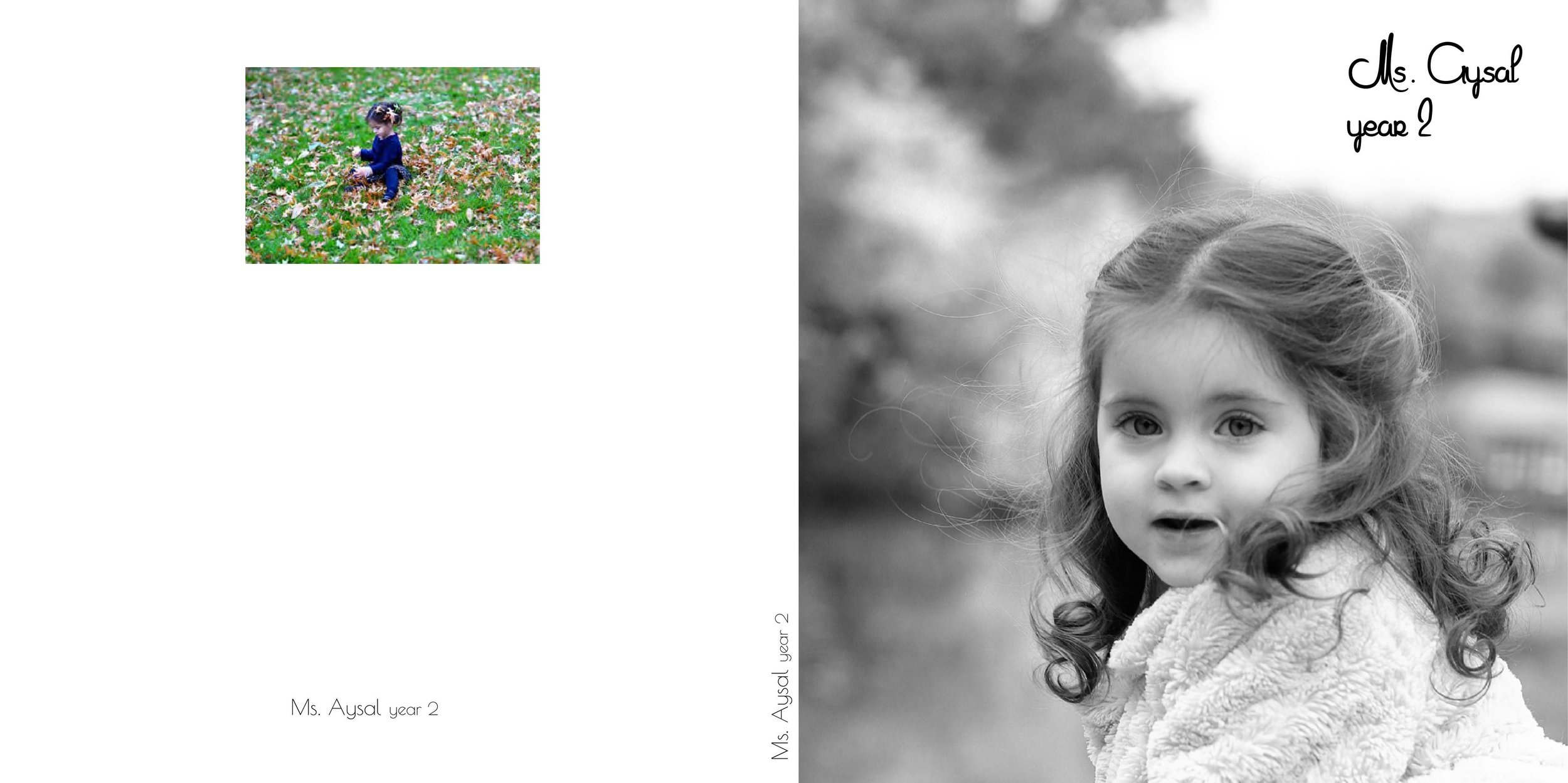 FANI AYSAL BOOK copy_000001.jpg
