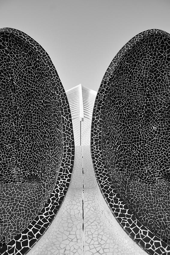 Calatrava Ciudad de Las Artes y Las Ciencias Valencia, Spain 4