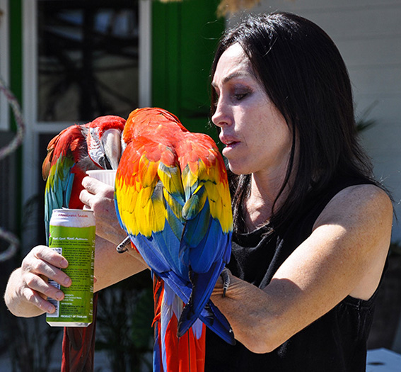 Heidi Fleiss and macaws Pahrump, Nevada