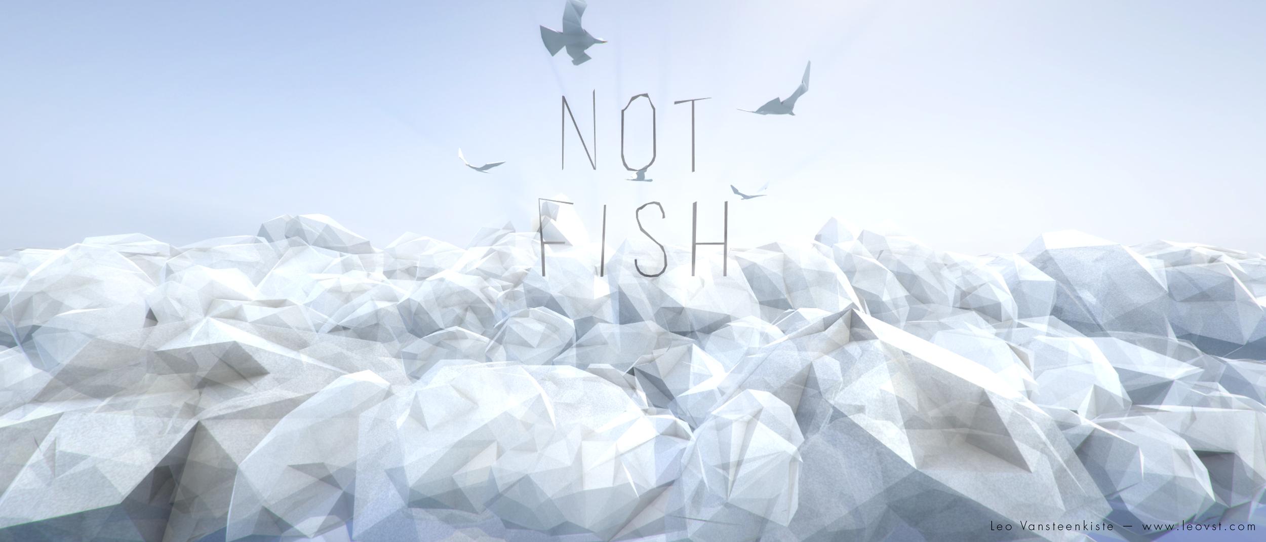 Not Fish Intro