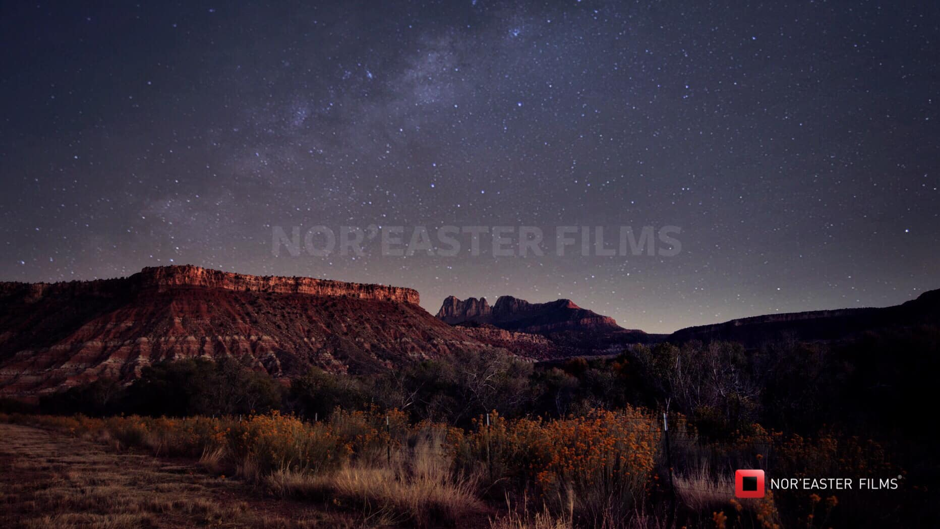 Desert Night in Zion National Park, Utah
