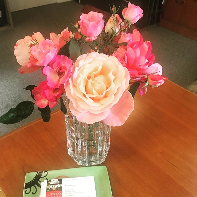 Bounty from the Oswego Historic Rose Garden. Not only are they lovely, but their heirloom scent is intoxicating! The garden is here for you. Come visit! #oswegoheritagecouncil #oswegoheritagehouse #lakeoswego #lakeoswegooregon