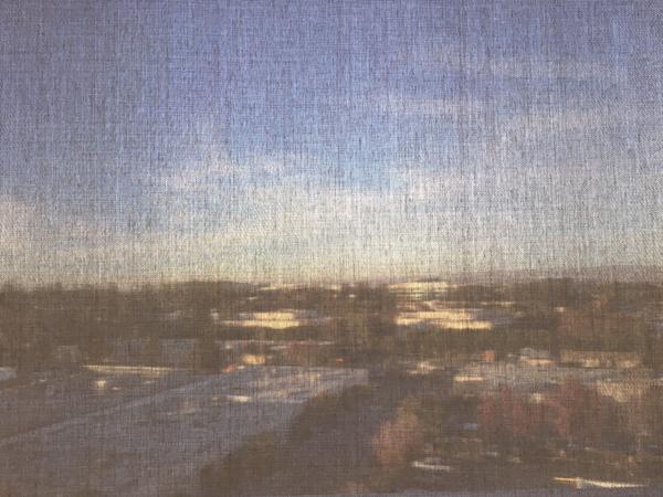 though the blinds - meg lauber 2015