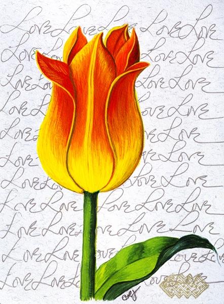 Tulip - Love.jpg