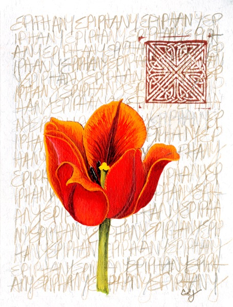 Orange Flower.jpg