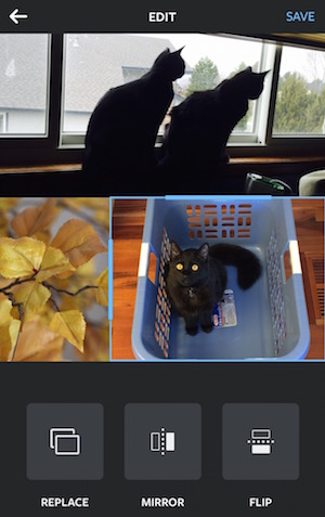 Layout's very simple collage editor. Yeah, it's that easy to use.