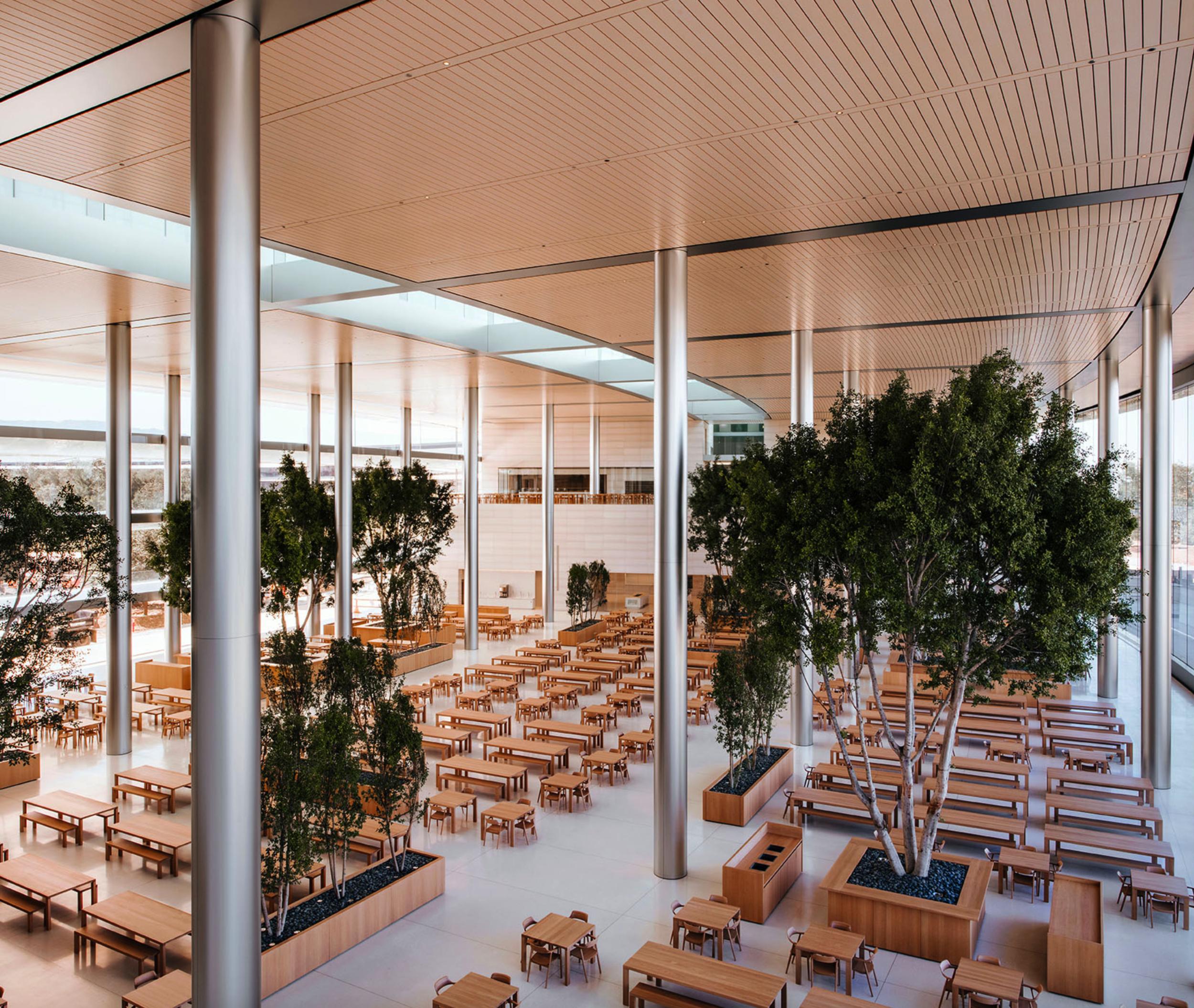 Apple Park HQ Building Café.  Photo by Mark Mahaney for Wallpaper•