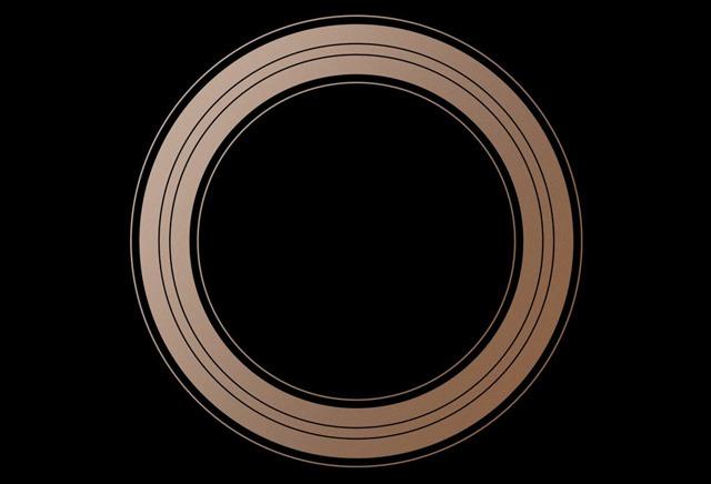 27525-41305-sept12-ring-l.jpg