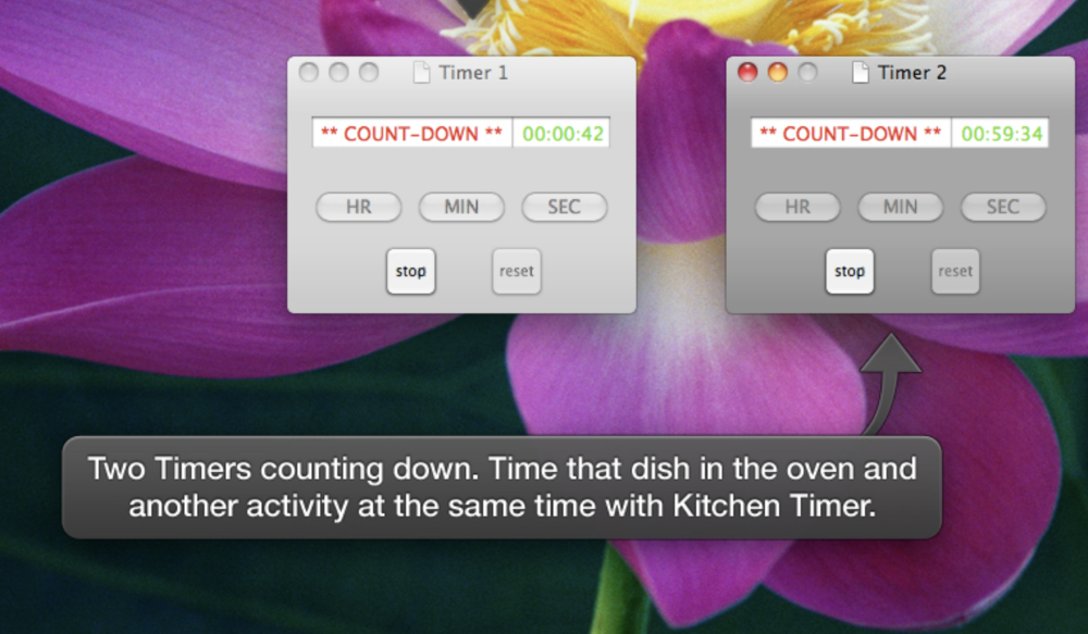 Kitchen Timer screen.png