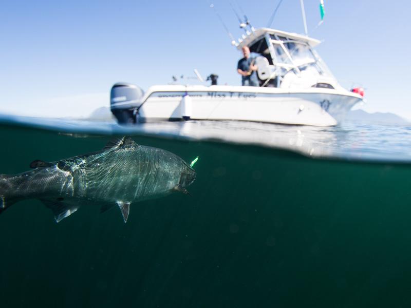 Salmon fishing off Vancouver Island's west coast in beautiful Tofino, BC.