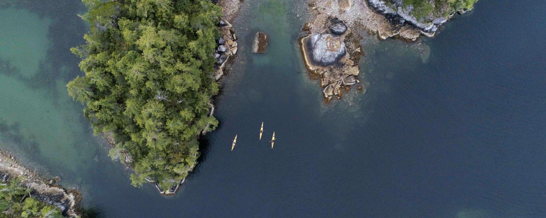Kayak Tour Details -