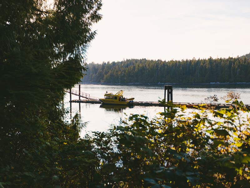 hot-springs-cove-tofino-8.jpg