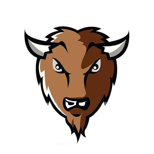 bison finants3.jpg