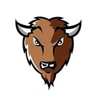 bison finants4.jpg
