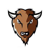 bison finants5.png