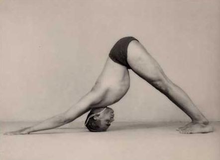 Light on Yoga, BKS Iyengar, ©1966, page 110