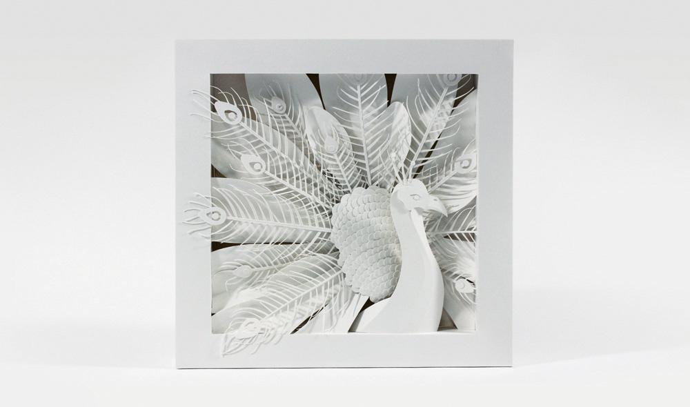 sabo-peacock