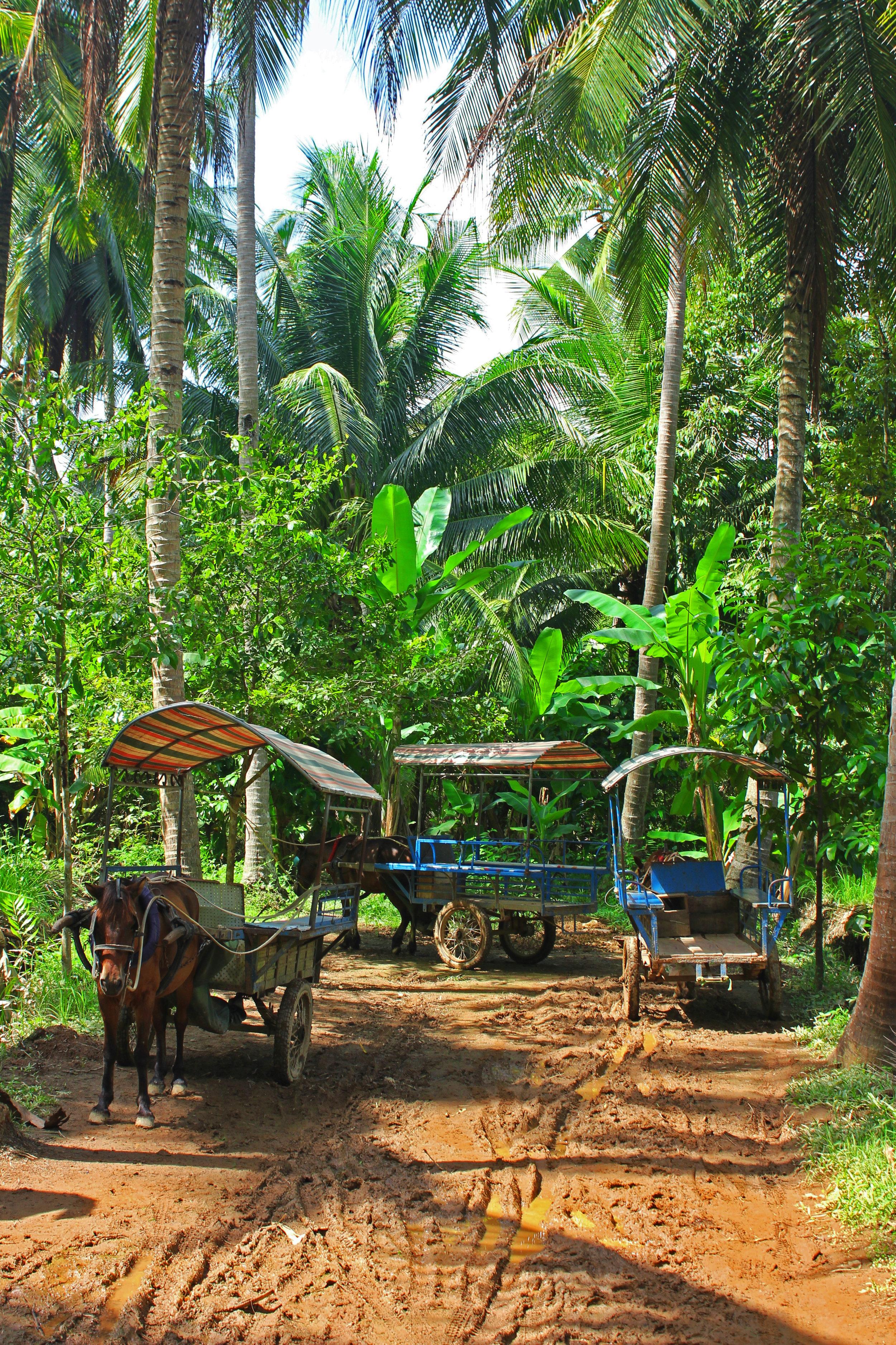 Vietnam island