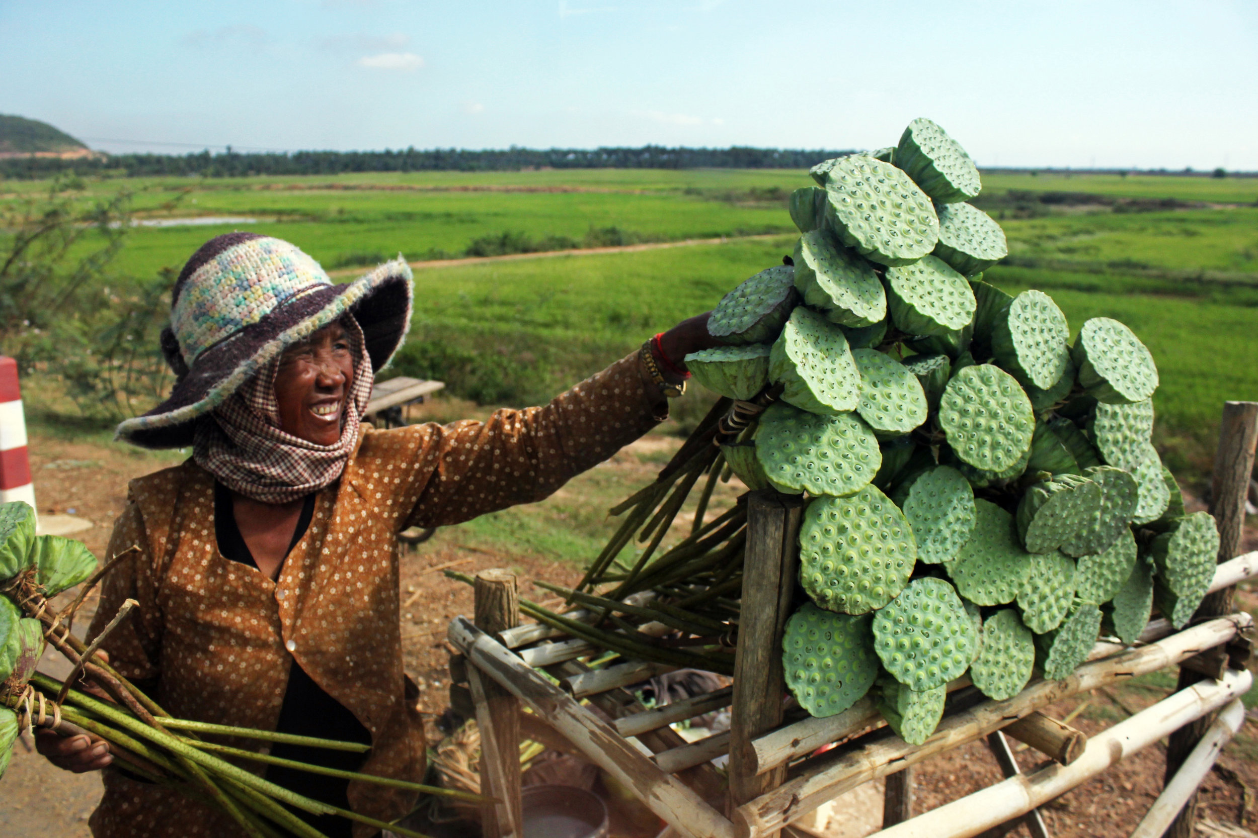 Woman selling lotus pods along the highway in Cambodia.