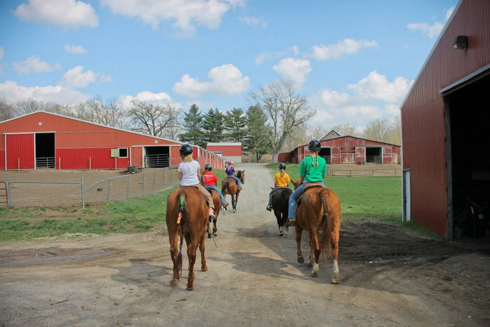 Sunset Trails Horse Stables | Lee's Summit, MO | Petting Zoo