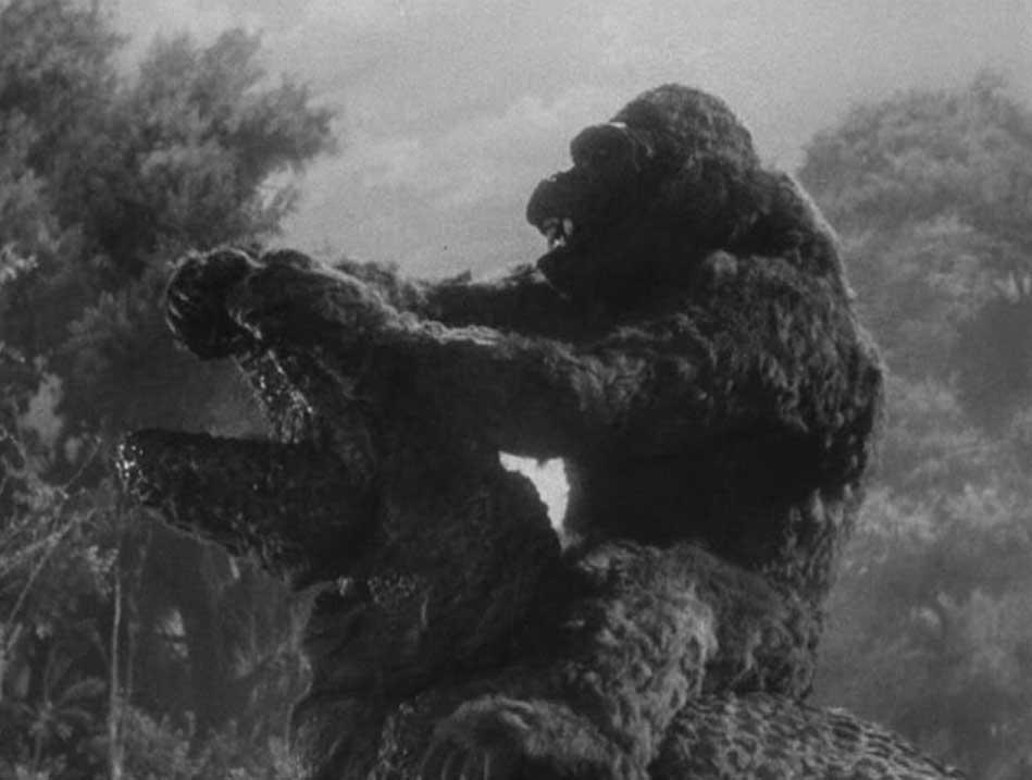 Kong's gonna ruin that T-rex.