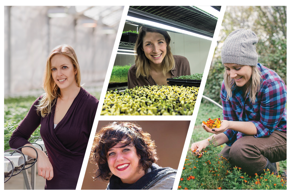 Meet 4 female trailblazers raising the bar in controlled environment agriculture through entrepreneurship.