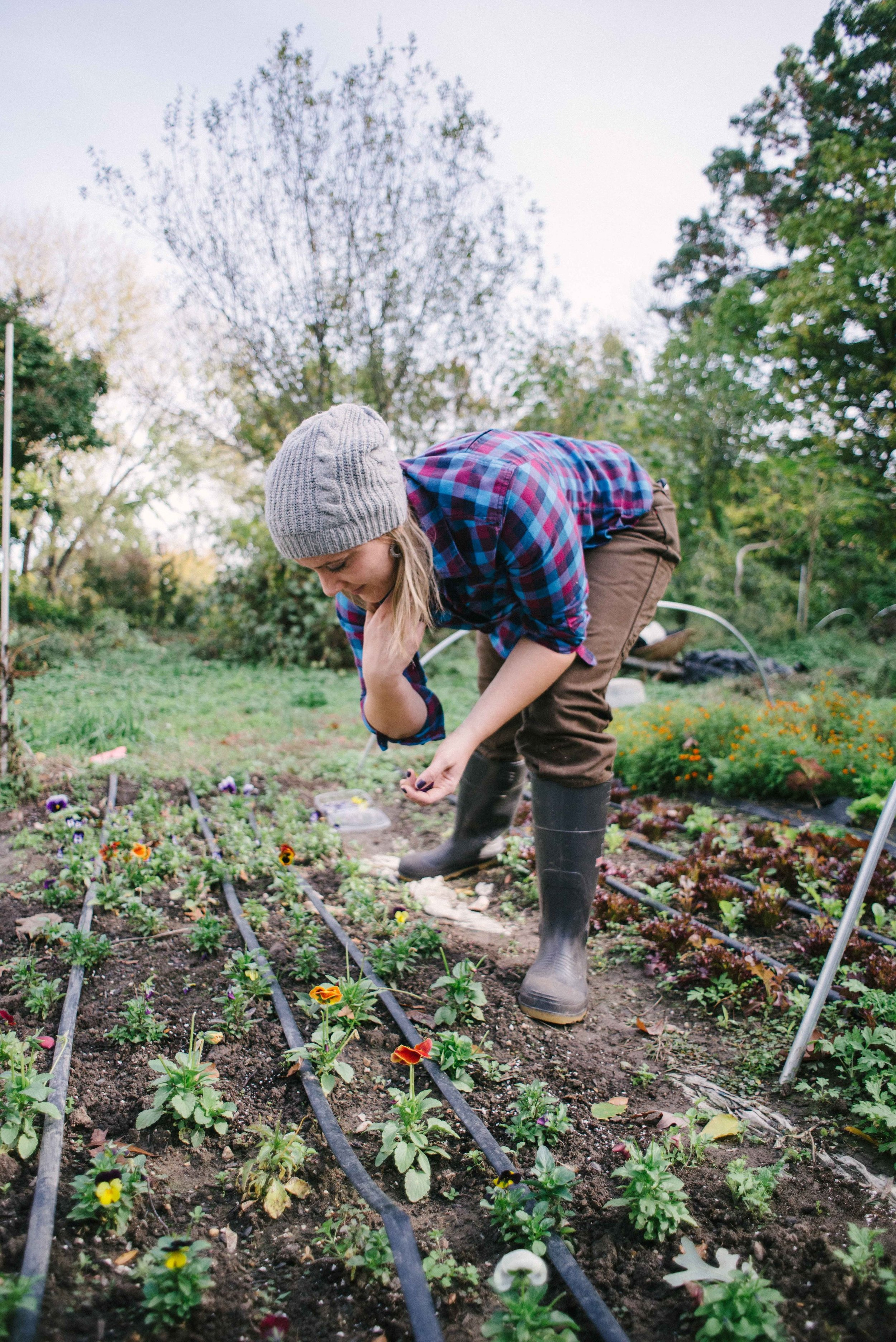 Women in Food: Mary Ackley and the Art, Science and Engineering of Urban Farming