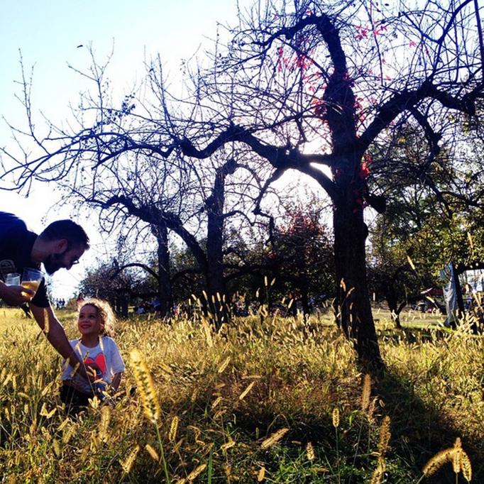 apple-picking-warwick.png