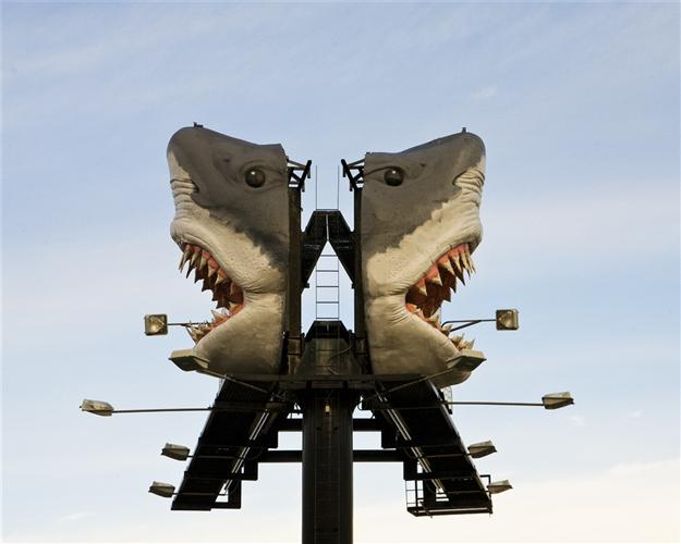 Large_Jaws+x2.jpg