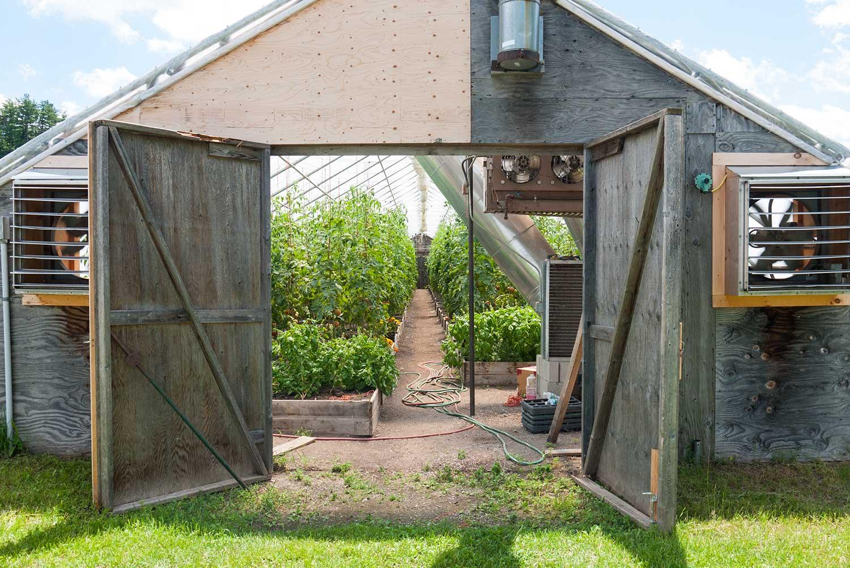 tomato-farm.jpg