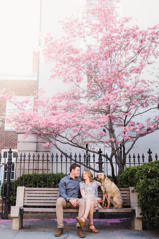 photographers-in-philadelphia-wedding-photography-family-photography-pet-photographer-jep-1